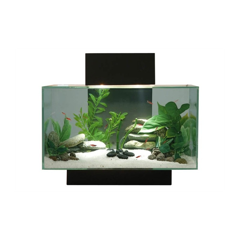 décoration aquarium fluval edge