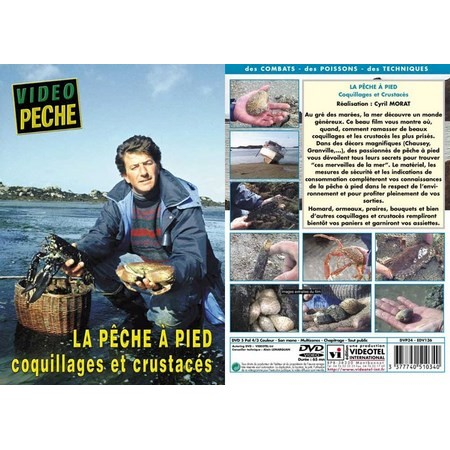 DVD - LA PECHE À PIED COQUILLAGES ET CRUSTACES - PECHE EN MER - VIDEO PECHE