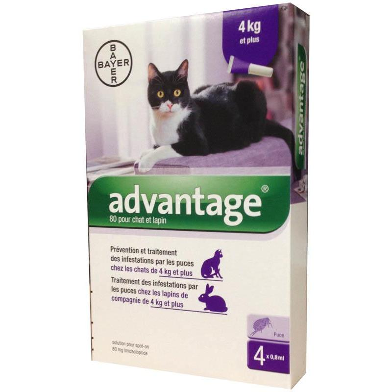 pipette insecticide bayer advantage 80 chat lapin 4kg. Black Bedroom Furniture Sets. Home Design Ideas