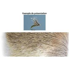 ANTELOPE HAIR TOF