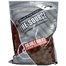 THE SOURCE APPATS SOLUBLES ADY040022