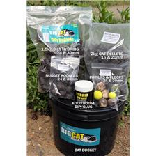BAIT PACK BIG CAT SESSION BUCKET