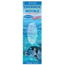 BAS DE LIGNE MER FLASHMER DAURADE ROYALE ATLANTIC - PAR 10