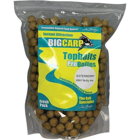 BOUILLETTE BIG CARP ESTERBERRY
