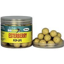POP UPS FRUIT BOMB / SAUMON Ø 16MM