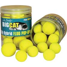 Baits & Additives Big Cat OILY HYBRID FLUO POP UP O 24MM