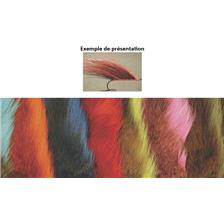 BUCKTAIL TOF