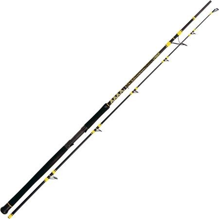 CANNE BLACK CAT PASSION PRO DX BOAT SPIN