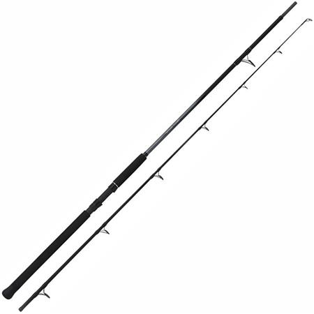 CANNE SPINNING SHIMANO BEASTMASTER CATFISH LURE