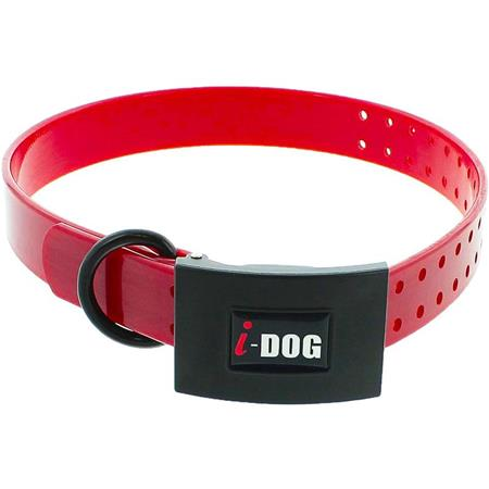 COLLIER CHIEN I-DOG PREMIUM