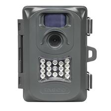 Wild-Cameras