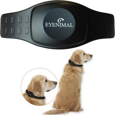GPS EYENIMAL DOG TRACKER