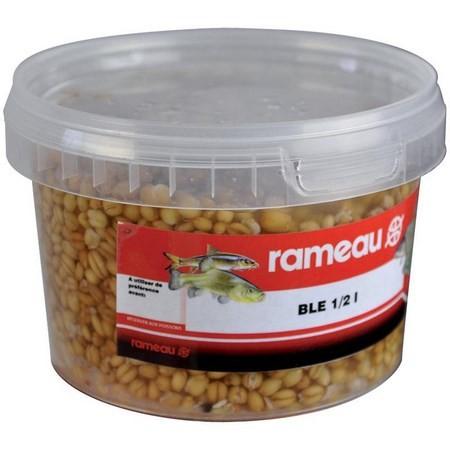 GRAINE CUITE RAMEAU BLE