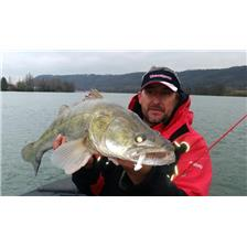 GUIDE PREDATOR THE RHONE, THE SAONE, THE LOIRE VILLEREST, GRANGENT AUVERGNE THE RHONE THE ALPS STEPHAN POINCOT