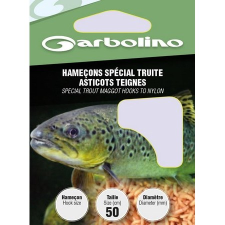 HAMECON MONTE GARBOLINO SPECIAL TRUITE ASTICOTS TEIGNES - PAR 10