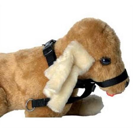 LICOL DOG HALTER
