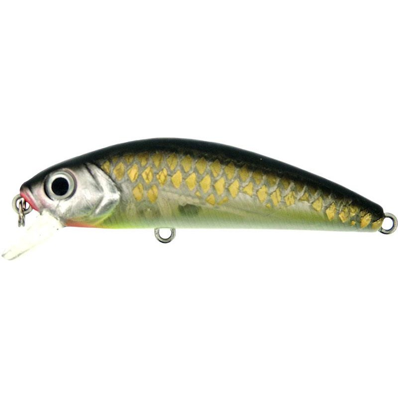 Lures River2Sea HUMBUG 6.5CM FUNKY ROACH