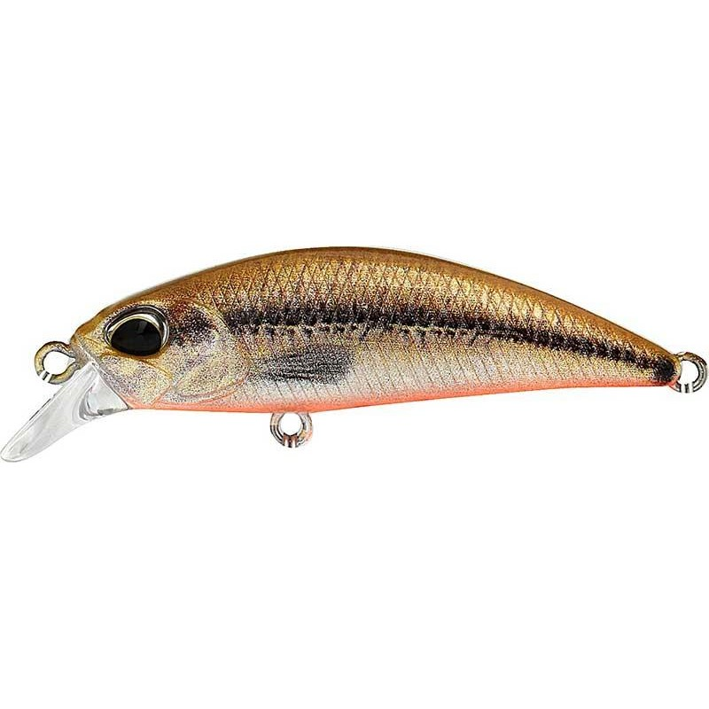 SPEARHEAD RYUKI 38S 4CM ACC4824 - VAIRON - RED BELLY