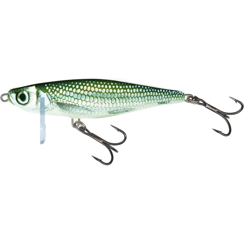 Lures Salmo THRILL SINKING 9CM 25G COULEUR HBL