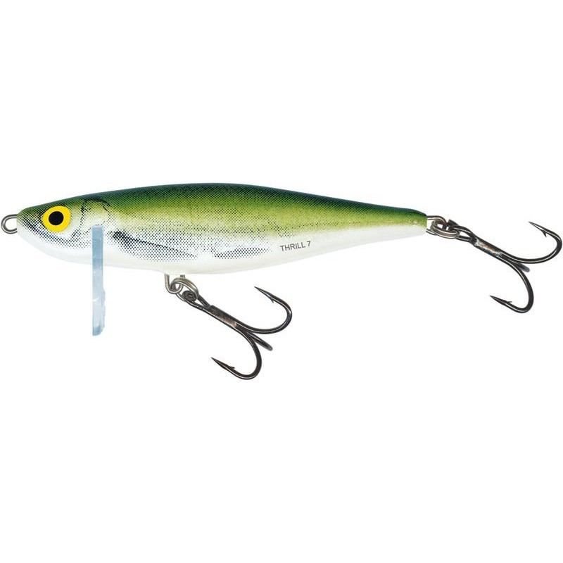 Lures Salmo THRILL SINKING 9CM 25G COULEUR OB