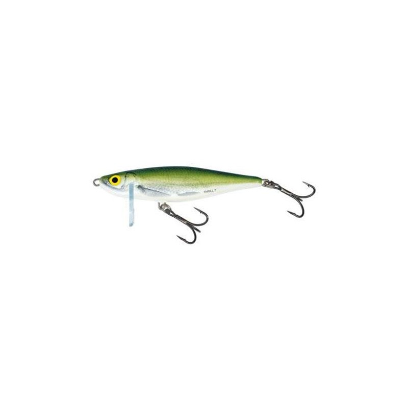 Lures Salmo THRILL SINKING 5CM 6.5G COULEUR OB