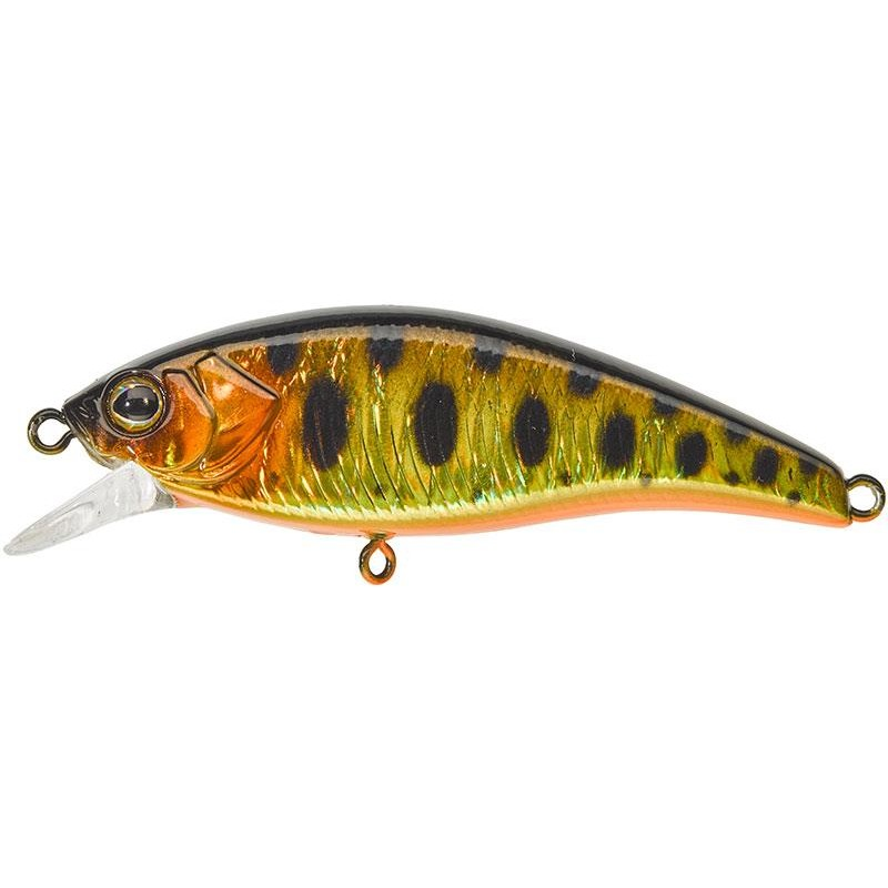 FLAT TRICOROLL 55 S 5.5CM HL GOLD TROUT