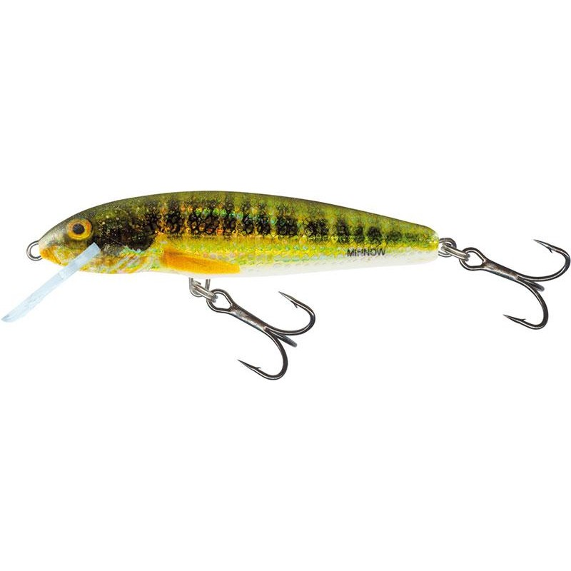 Lures Salmo MINNOW SINKING 7CM HOLO REAL MINNOW