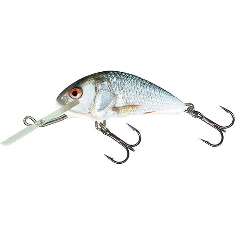 Lures Salmo HORNET SINKING 4CM REAL DACE