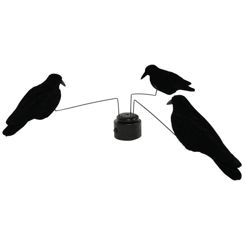 manege a corbeaux gmt electrique. Black Bedroom Furniture Sets. Home Design Ideas
