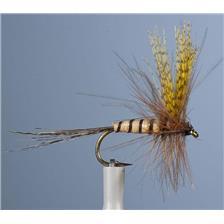 Flies JMC MAI 36 H12 3 MOUCHES