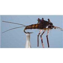 Flies JMC NOYEE NY 26 H 10 3 MOUCHES