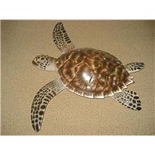 OVERLAPPING STRUCTURE SEMI HULL RELIEF CAP VERT TORTUE IMBRIQUEE