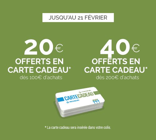 Jusqu'à 40€ offerts en Carte Cadeau...