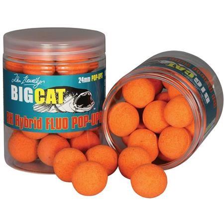 POP-UP BIG CAT RH HYBRID FLUO POP-UPS