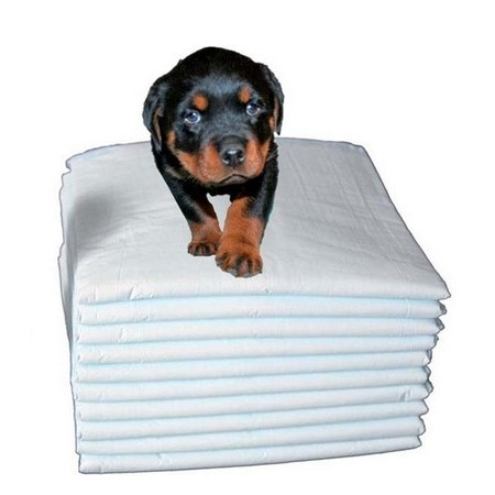 PUPPY TRAINING PAD FOR CARLAIN