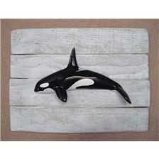 SCULTURA MEZZO-SCAFO CAP VERT ORCA