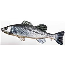 SEABASS CUSHION GABY