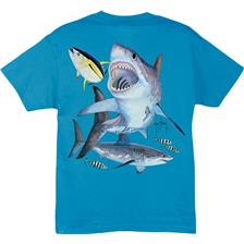 Habillement Guy Harvey GREAT TURQUOISE TAILLE XL
