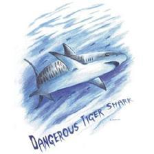 Apparel Technipêche AMERICAN STYLE TIGER SHARK BLANC XL