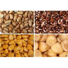 TIGER NUTS NATURAL BAITS