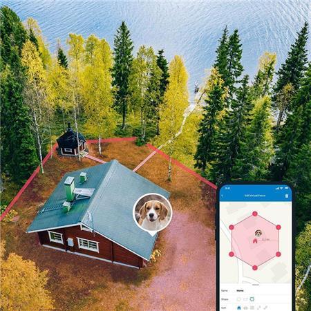 TRACTIVE GPS TRACTIVE DOG 4 - COLLIER GPS POUR CHIEN AVEC SUIVI D'ACTIVITÉ