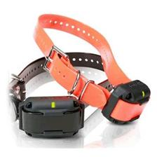 TRAINING COLLAR 2 DOGS DOGTRA 1212 NCP / 3500NCP